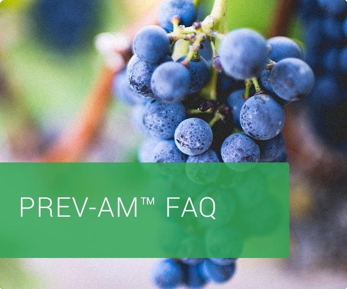 FAQ prevam